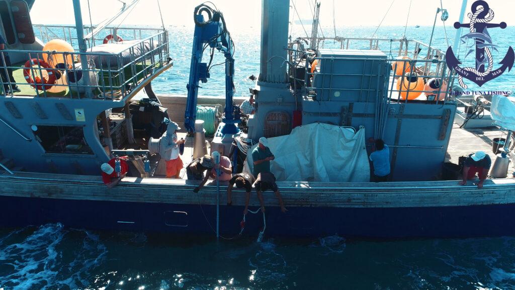 Tuna fishing on the high seas