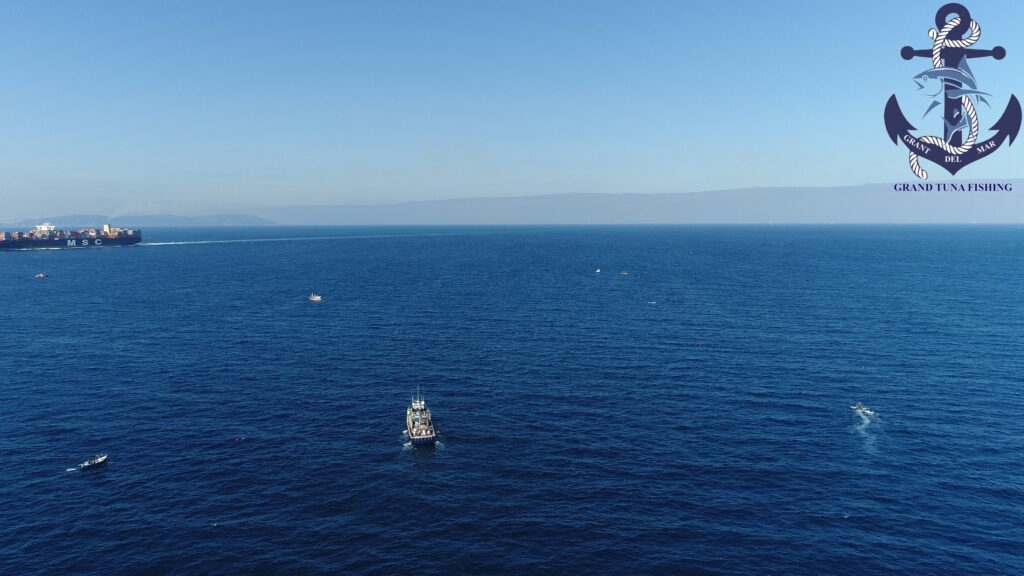 Catching tuna in the Mediterranean Sea