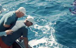 Large tuna fishing