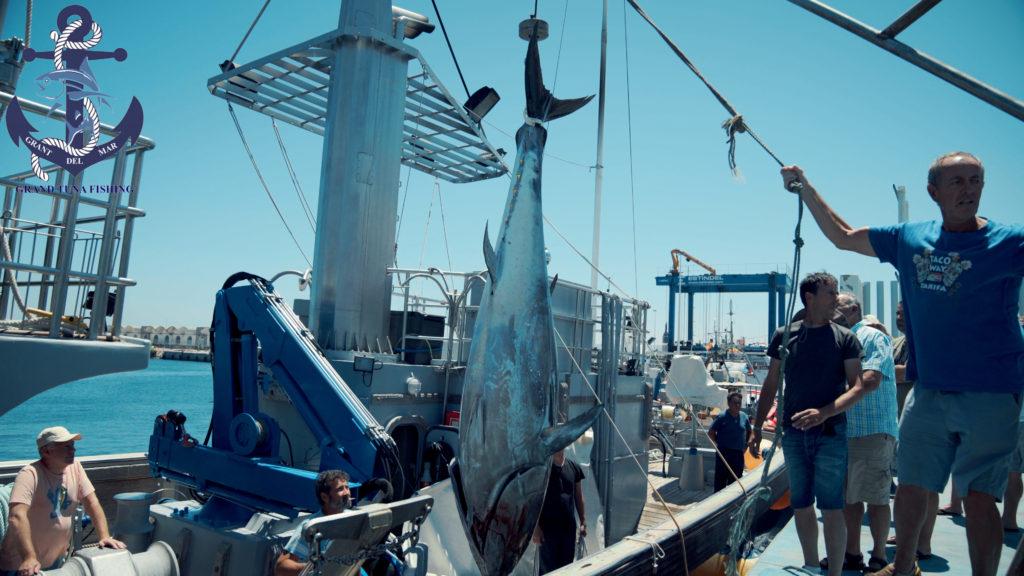 Sea fishing on a yacht