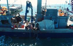 Fishing for tuna in Spain