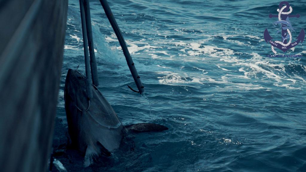 Captured fishing at sea