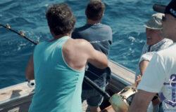 Fishing in Spain in the Mediterranean Sea