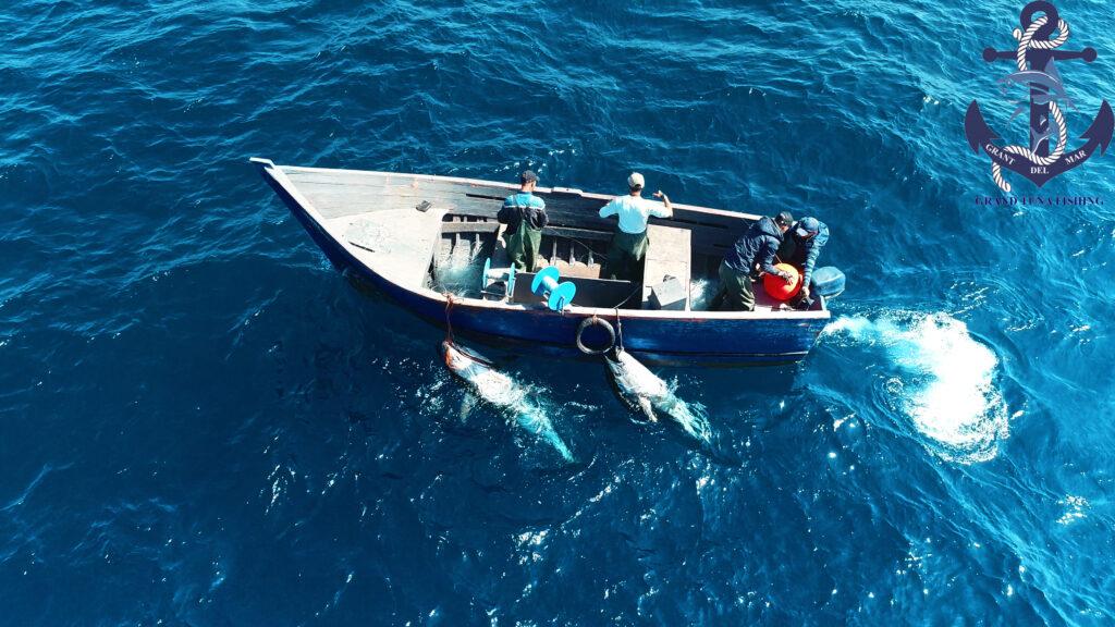 Pesca en el mar barco desde el