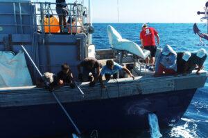 Vacaciones y Pesca en España