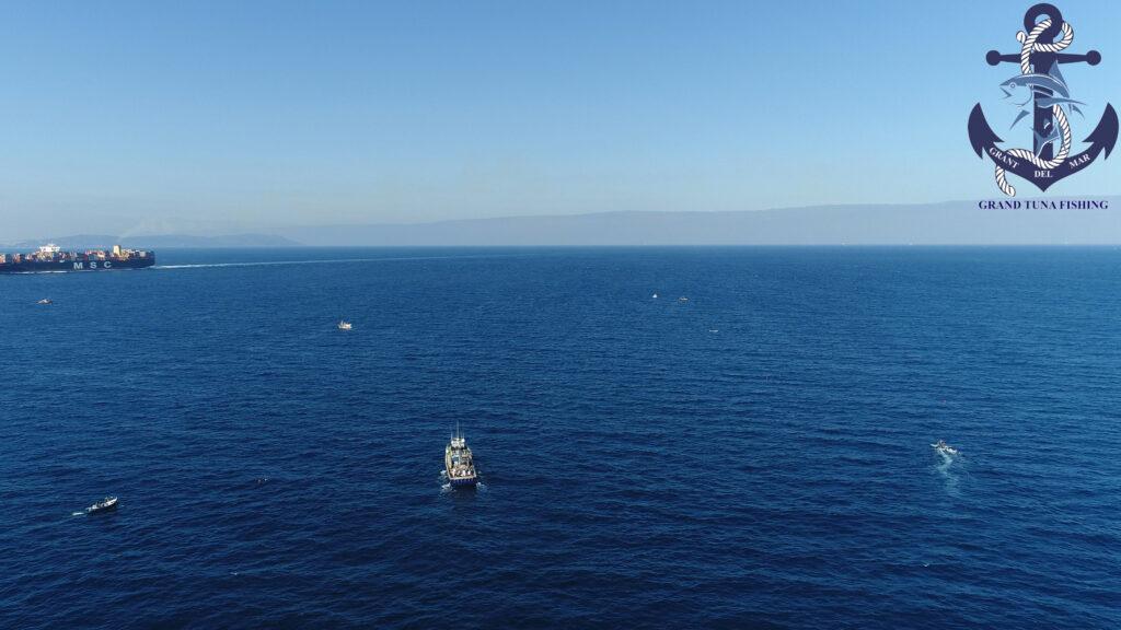 Pesca de atún en el Esfrecho