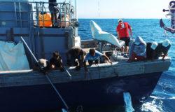 Ловля рыбы в море