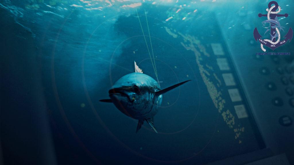 Рыбалка в Испании на Средиземном море