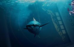 Троллинг рыбалка с помощью спиннинга