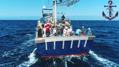 Приготовить красного тунца